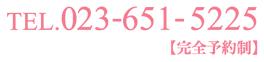 logo_topsub01.png